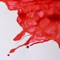 094376896404-W&N DRAWING INKS [SWATCH] SCARLET (For screen)