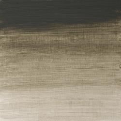 ARTISTS' OIL COLOUR DAVY'S GRAY