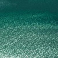 PROFESSIONAL WATERCOLOUR COBALT GREEN DEEP