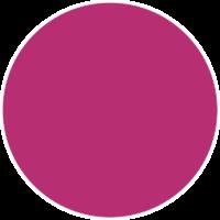 Posca Fuchsia