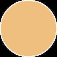 Posca Light Orange