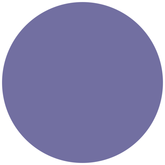 Posca Metallic Violet