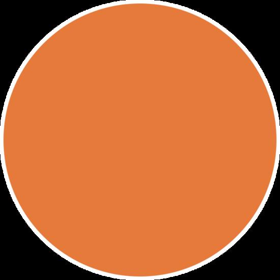 Posca Orange